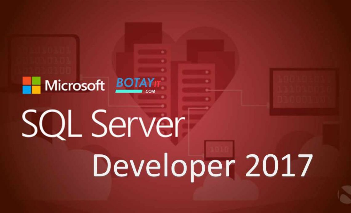 Microsoft SQL Server Developer 2017 full active