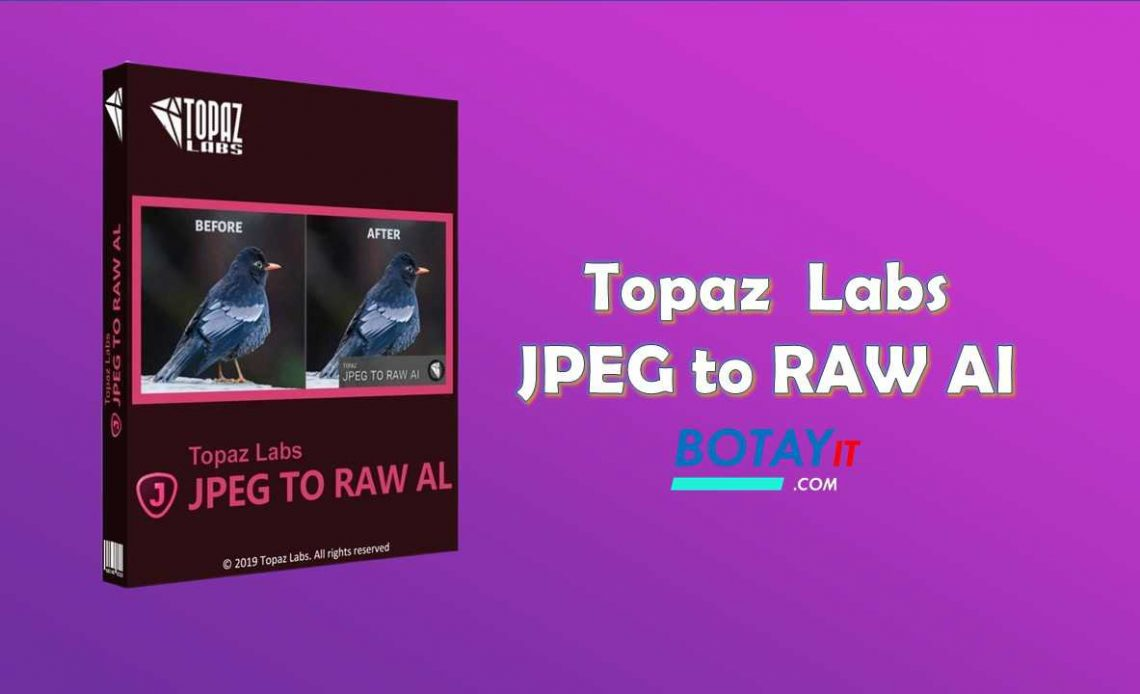 Topaz JPEG to RAW AI full crack