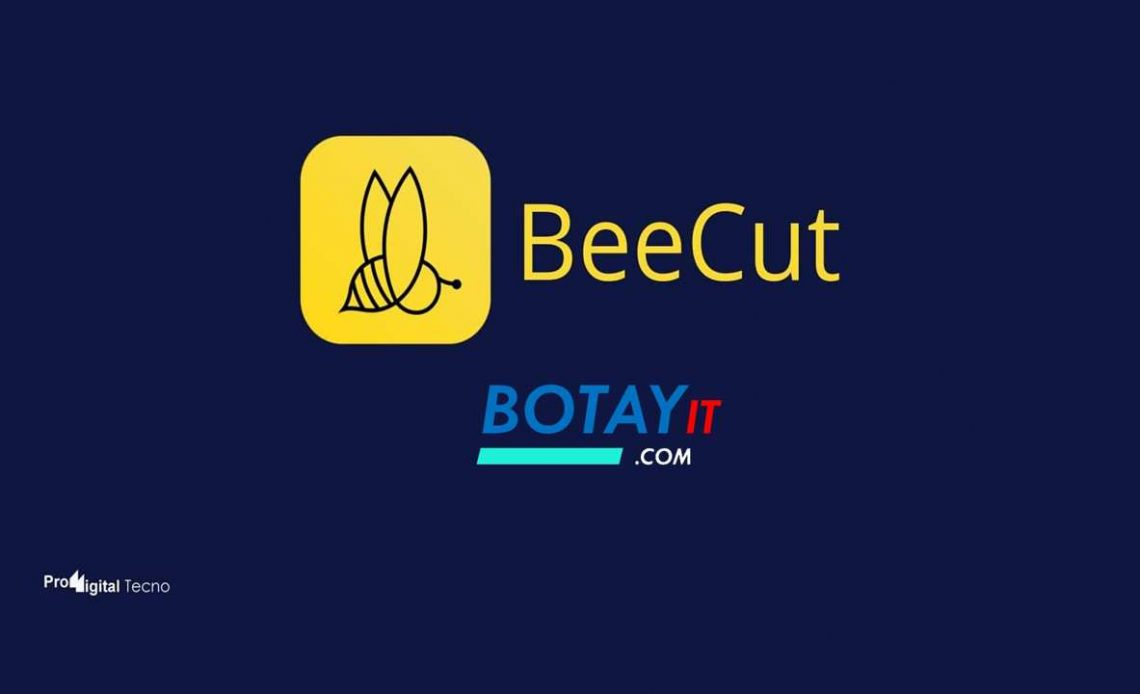 download BeeCut 2019 full crack
