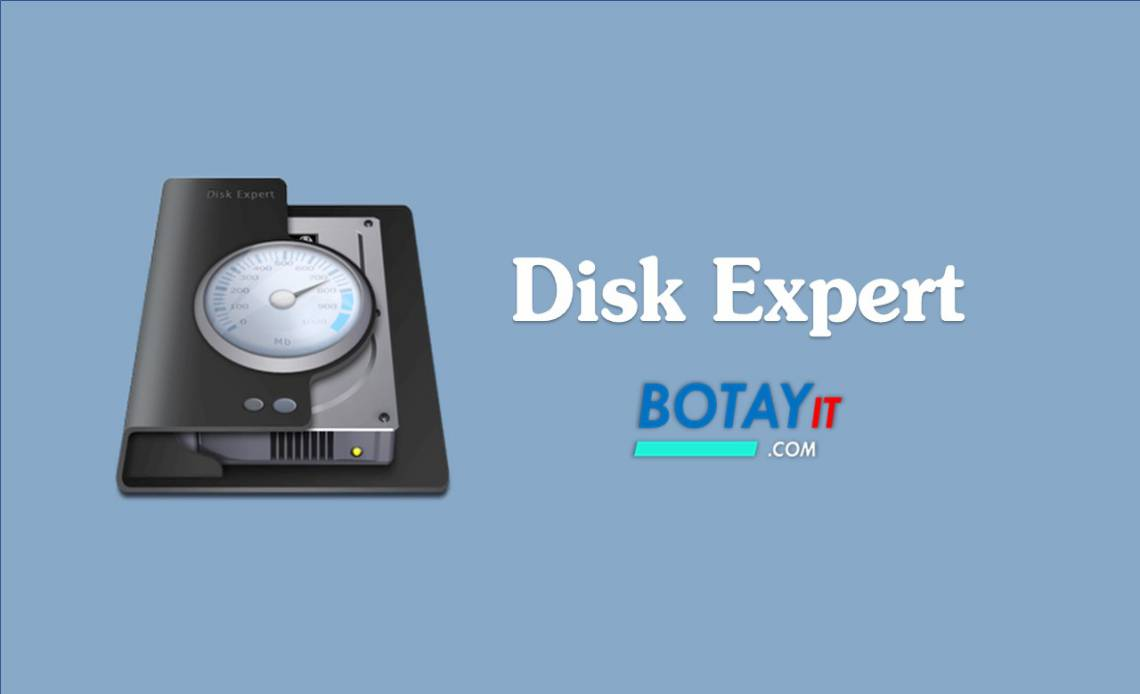 download Disk Expert full crack